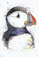 Puffin Along by DeftLeftHand