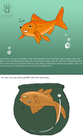 Goldfish Mistakes by DemonML