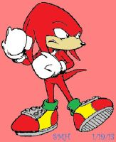 Knuckles the Echidna by SonicMauriceHedgehog