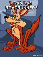Egad 90 - I can haz roadrunner by arsdraconis