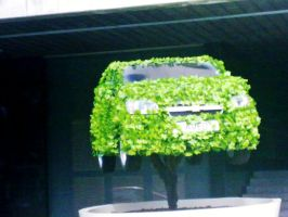green car by ange95