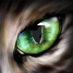 The Iris of a Feline by foresteclipse