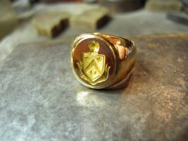 helmet star signet ring by Debals