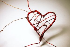 conductivity of the heart: 1 by niftyness