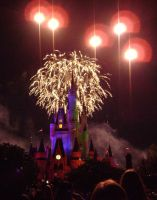 Cinderellas Castle at Night:18 by CanisCamera