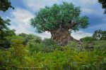 Tree of Life by ashamandour