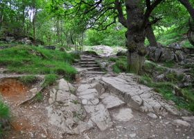 Rocky Path by Forestina-Fotos