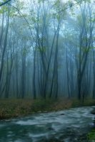 Premade Background 1 by maiarcita