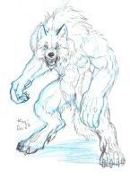 Winter Wolf by rwolf