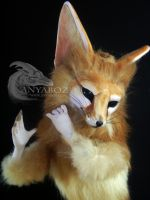 Fennec Fox Room Guardian by AnyaBoz