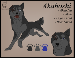 Akahoshi Ref Sheet by WyldeElyn