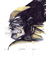 the wolverine by camillo1988