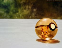 Pokeball of Eevee by Jonathanjo