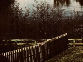 Nature_scape_dark_ fence 02 by Aimelle-Stock