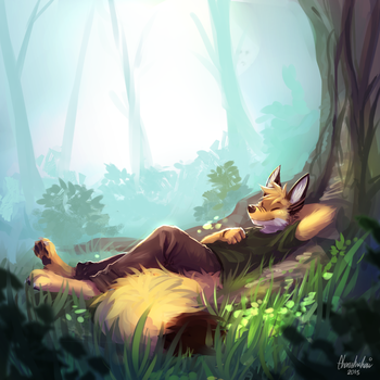 Peaceful Afternoon by Malfurim