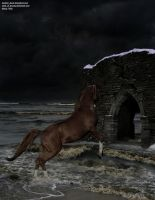 Nearing Storm by RemorseHP