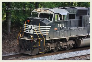 NS 2615 by SassyPants61762