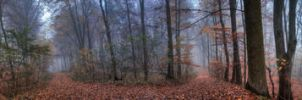 Forestscape by FreeForms