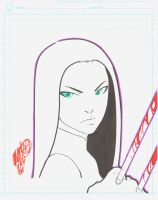 X-23 by Chamba by hierojux