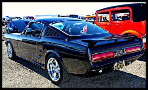 Fastback Goodness by StallionDesigns