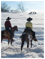 Breyer - Winter On The Range by The-Toy-Chest