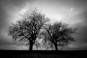 Two Trees Grisaille by roon1305