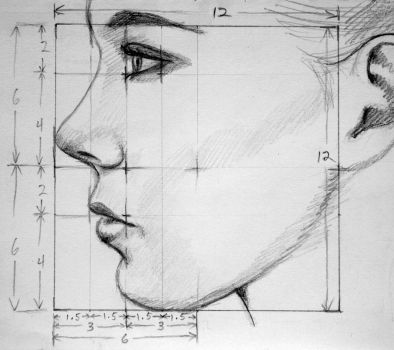 Profile Proportions by PMucks