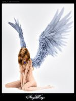 :AngelWings: .Collab. by sigma19