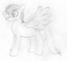 Airwing(sketch) by Scatterwing