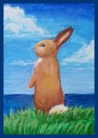 Bunny on a sea cliff by nienor