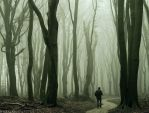 The Grey by Nelleke