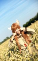 Horo / Holo - Spice and Wolf by GeniMonster