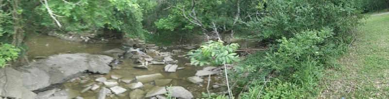 Panorama of Creek by jay042