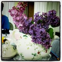 Lilacs and Teapot by NycterisA
