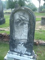 Headstone Lily by Wiccanslyr