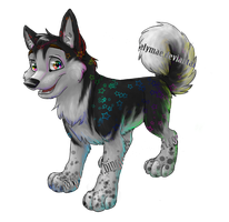 It can be Husky tiems?+YT LINK by Tylar-I