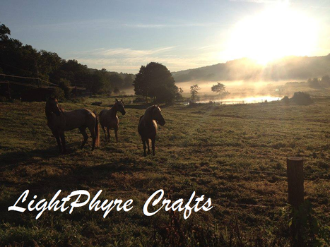 Horses at Sunrise Photo by LightPhyre
