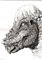Pachycephalosaurus by TheFranology