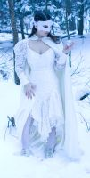 lace snow crystal turn by eyefeather-stock
