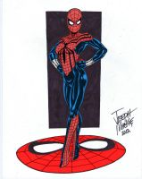 Spider-girl by RBWP-BRPW