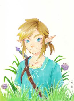 Breath of the Wild - Link by Olyvee