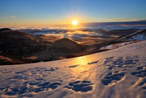 Sunburst over the Winter Land by MaximeCourty