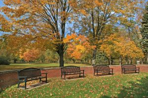 Fall Benches 4841537 by StockProject1