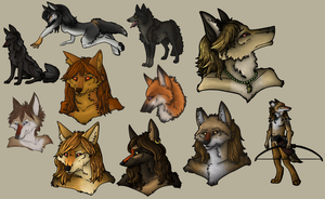 2013 January-February Adoptables by 00129