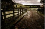 Rockhead Lane by younghappy