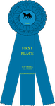 FIRST PLACE ribbon by noebelle