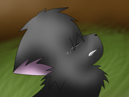 Cinderpelt's Sorrow by Silvernazo