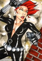 Black Widow ACEo by wheels9696
