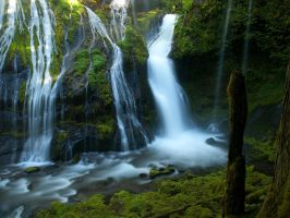 Panther Creek Falls, first impressions by Millsy1