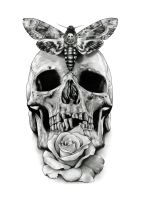 Skull Tattoo design drawing by AaronKingIllustrator
